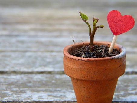 彼氏や彼女の浮気を許すたった1つの方法|許せる事が愛を深める秘訣