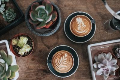 勉強中のカフェインでお手軽集中力アップ